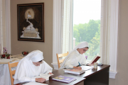 The apostolic year is a continued time of grace given by the Church for the novice to discern and prepare for profession.